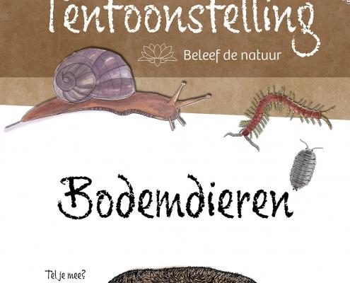 Lisbeth van Lintel bodemdier