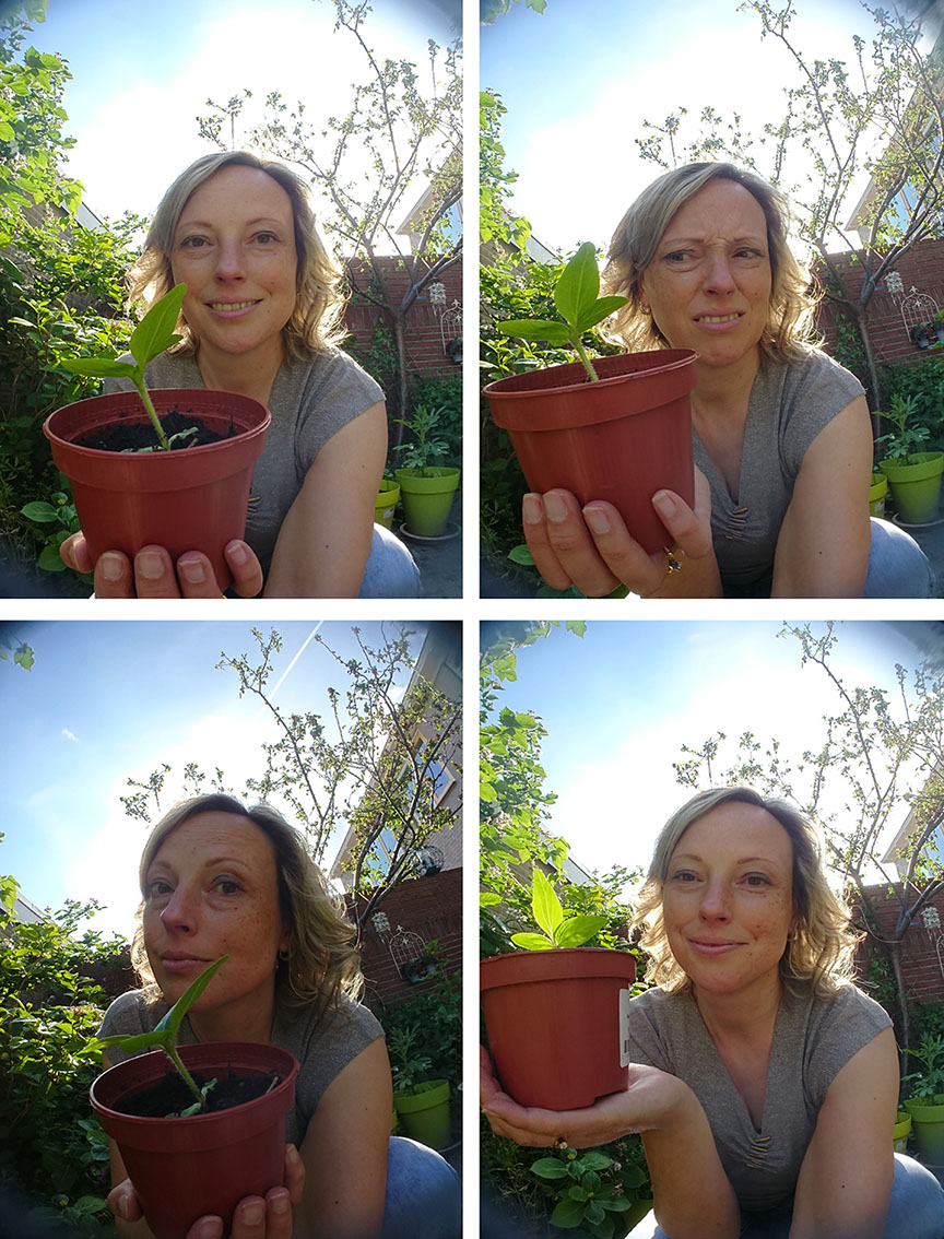 Lisbeth van Lintel saves the plant
