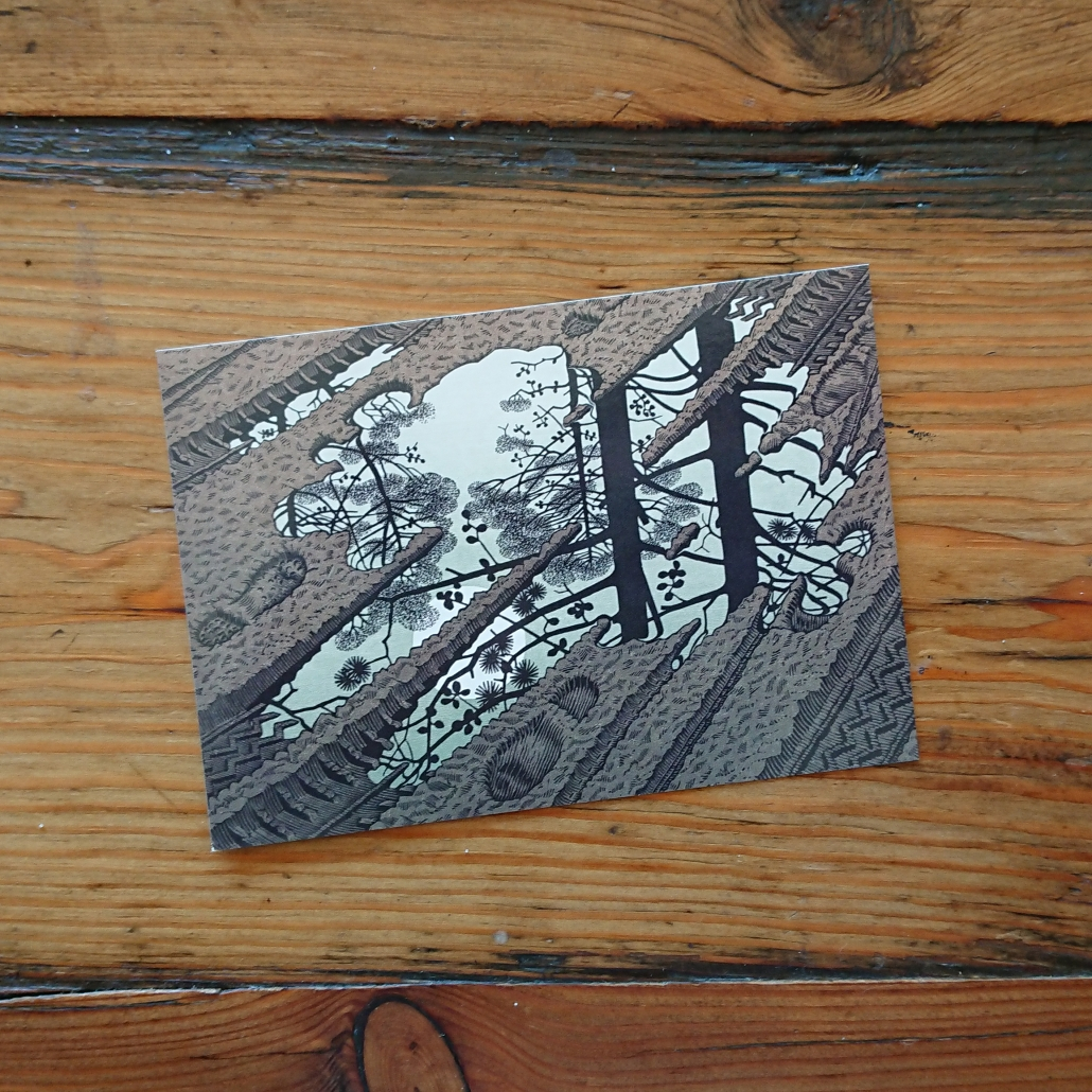 Lisbeth van Lintel postcard_Escher